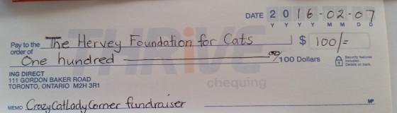 hfc cheque