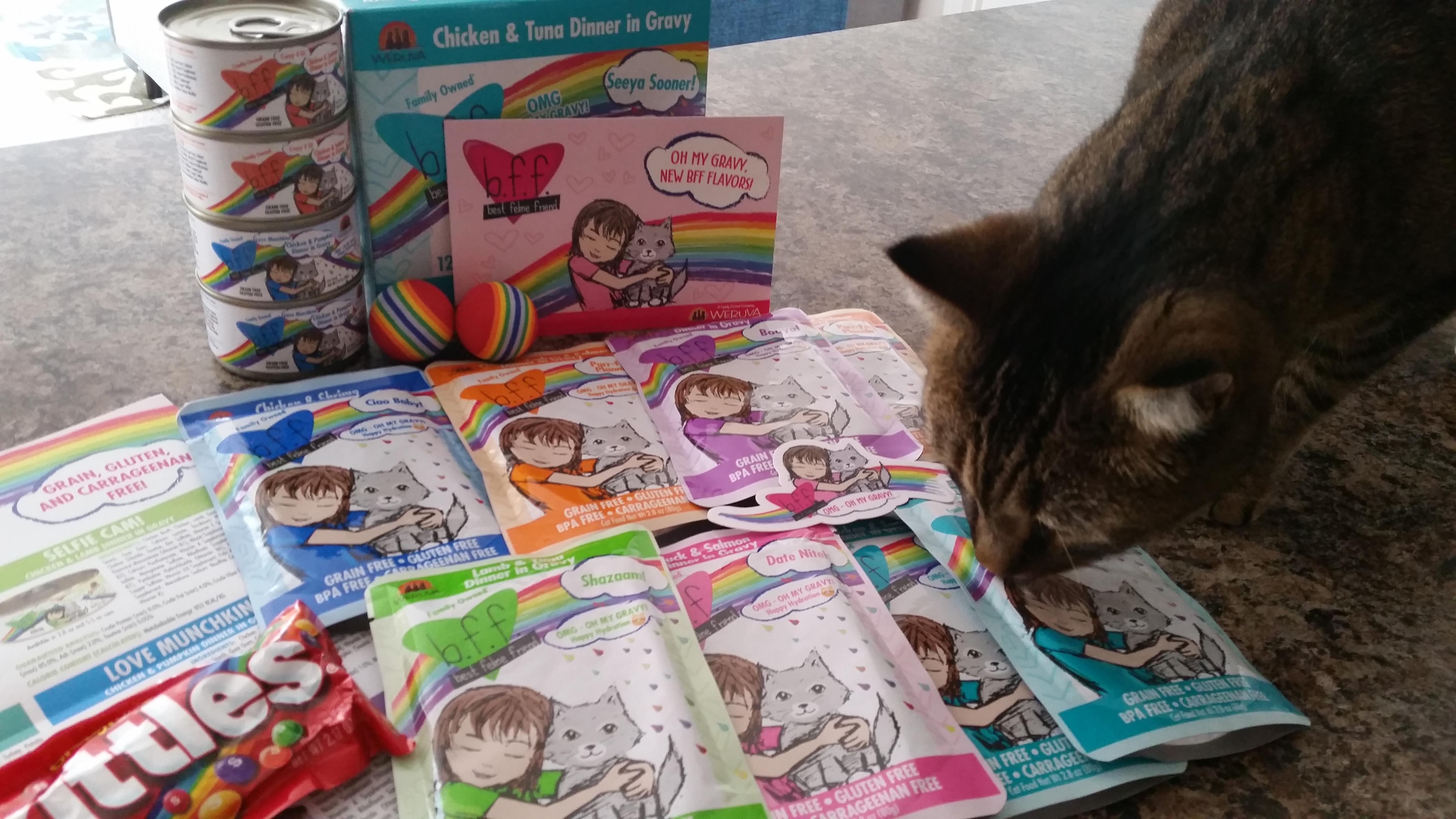 Review Weruva Bff Omg Oh My Gravy Crazy Cat Lady Corner