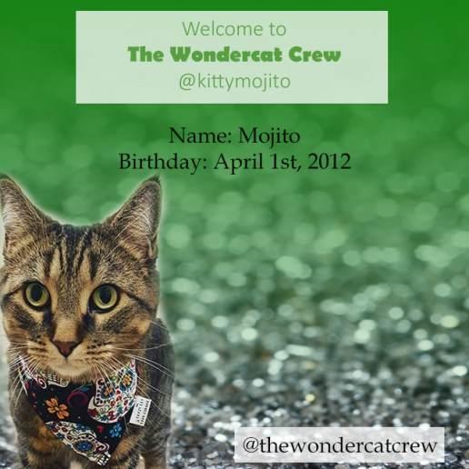 kitty-mojito-welcome_orig
