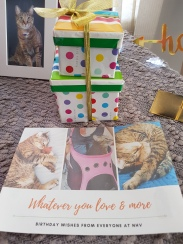 gifts from NHV Natural Pets